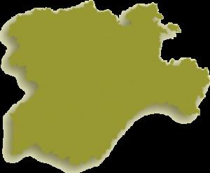 Rehabilitación Neurológica a Domicilio en Castilla y León